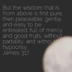 A recipe for wisdom James 317